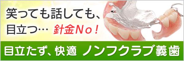 入れ歯<br />義歯
